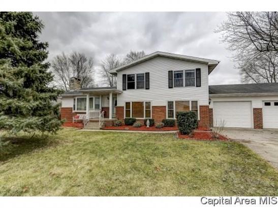 Tri-Level, Residential,Single Family Residence - Buffalo, IL (photo 2)