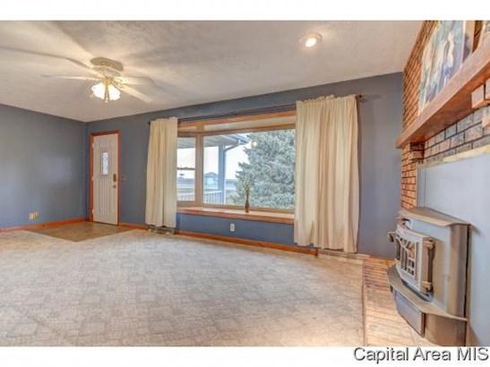Tri-Level, Residential,Single Family Residence - Buffalo, IL (photo 3)
