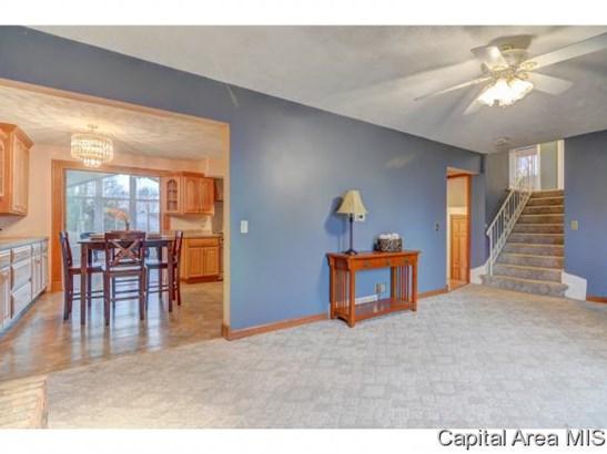 Tri-Level, Residential,Single Family Residence - Buffalo, IL (photo 4)