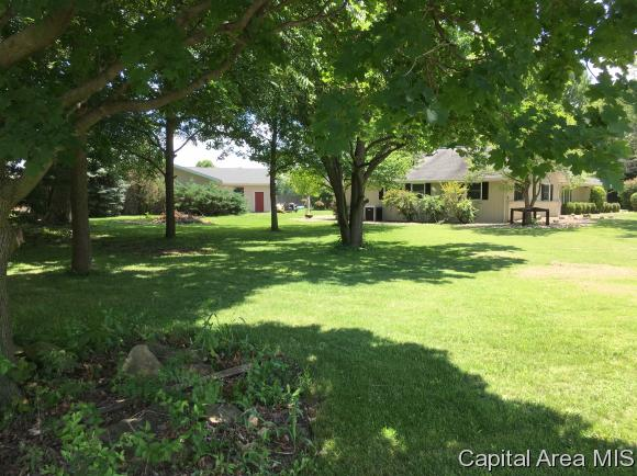 Ranch,1 Story, Residential,Single Family Residence - Rochester, IL (photo 4)