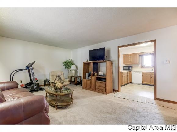 1 Story, Residential,Single Family Residence - Edinburg, IL (photo 2)