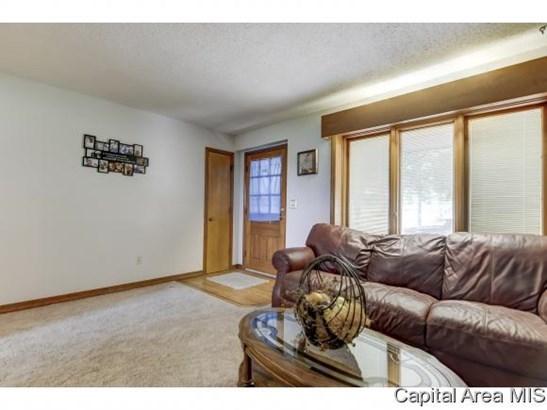 1 Story, Residential,Single Family Residence - Edinburg, IL (photo 3)
