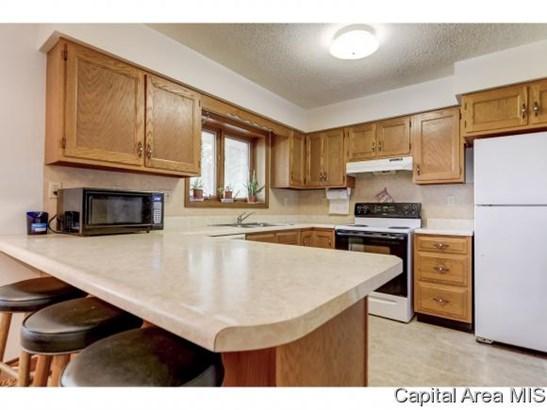 1 Story, Residential,Single Family Residence - Edinburg, IL (photo 4)