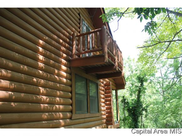 Multi-Level, Residential,Single Family Residence - Virginia, IL (photo 4)