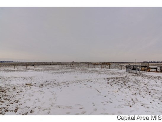 Agricultural,Residential - Loami, IL (photo 1)