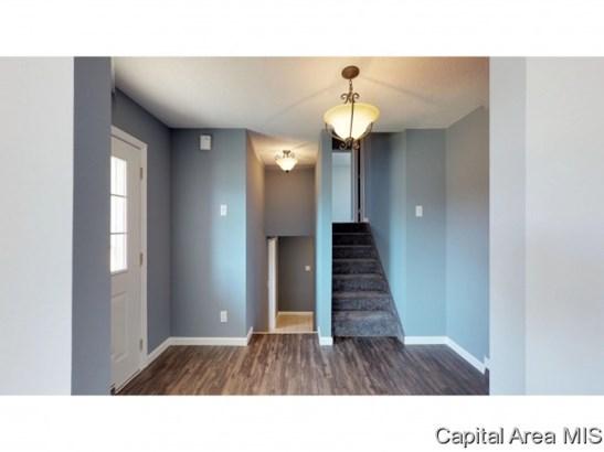 Tri-Level, Residential,Single Family Residence - Virden, IL (photo 3)