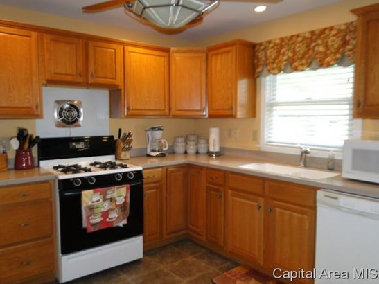 1 Story, Residential,Single Family Residence - Springfield, IL (photo 3)