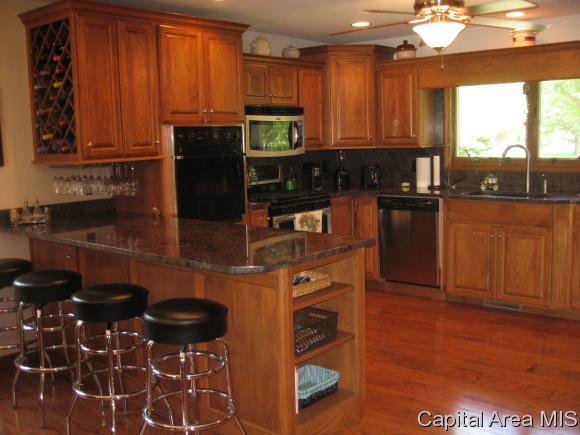Ranch,1 Story, Residential,Single Family Residence - Spaulding, IL (photo 4)