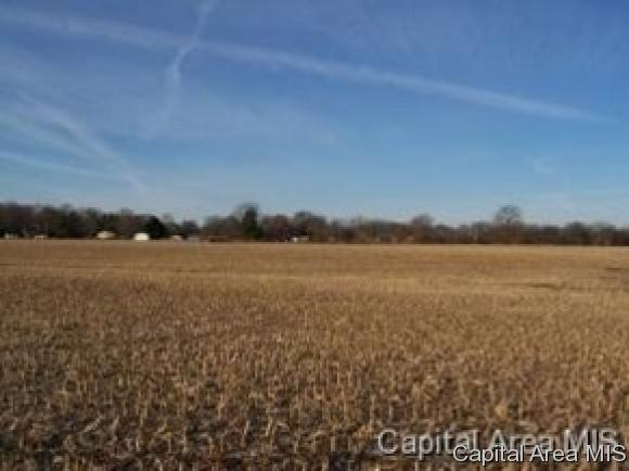 Agricultural,Residential - Springfield, IL (photo 1)