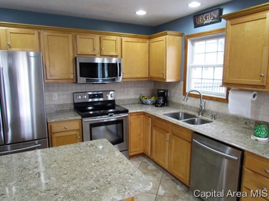 Residential,Single Family Residence, 2 Story - New Berlin, IL (photo 5)