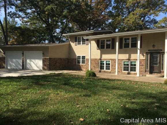 Bi-Level, Residential,Single Family Residence - Taylorville, IL (photo 1)