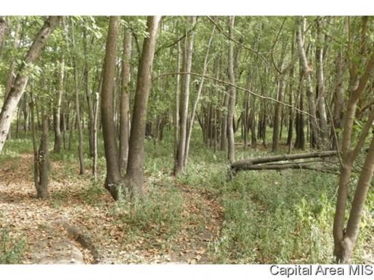Hunting/Fishing,Recreation - Pleasant Plains, IL (photo 2)