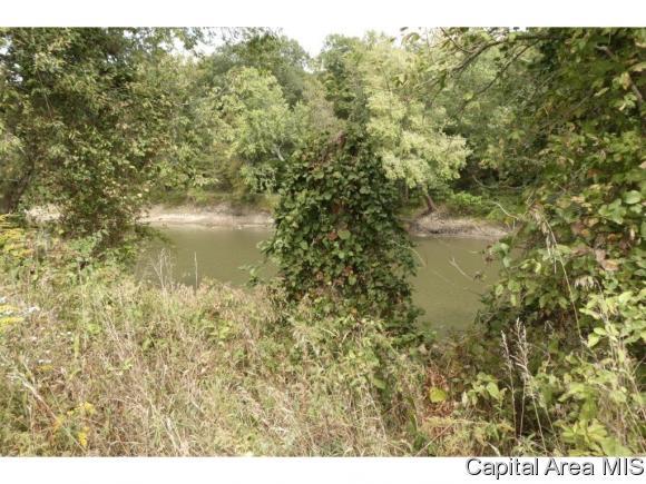 Hunting/Fishing,Recreation - Pleasant Plains, IL (photo 3)