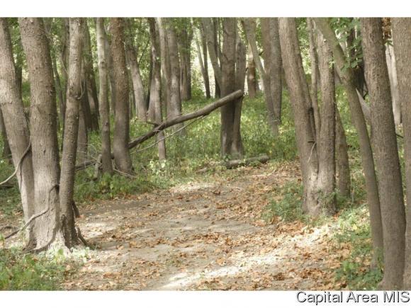 Hunting/Fishing,Recreation - Pleasant Plains, IL (photo 4)