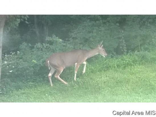 Hunting/Fishing,Recreation - Pleasant Plains, IL (photo 5)