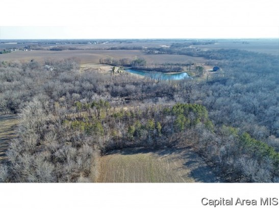 Agricultural,Recreation,Residential - Springfield, IL (photo 3)