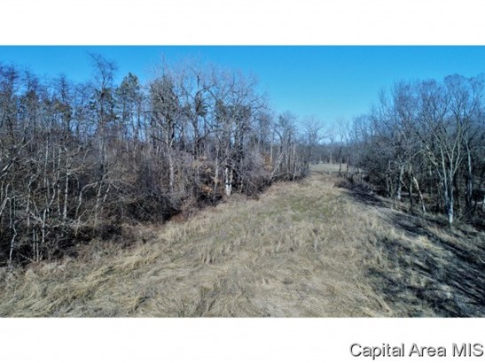 Agricultural,Recreation,Residential - Springfield, IL (photo 4)