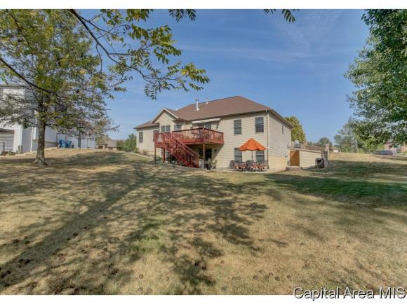 Ranch,1 Story, Residential,Single Family Residence - Rochester, IL (photo 3)