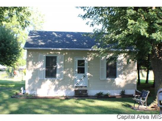1 Story, Residential,Single Family Residence - Virden, IL