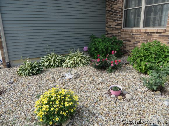 Ranch,1 Story, Residential,Single Family Residence - Rochester, IL (photo 5)