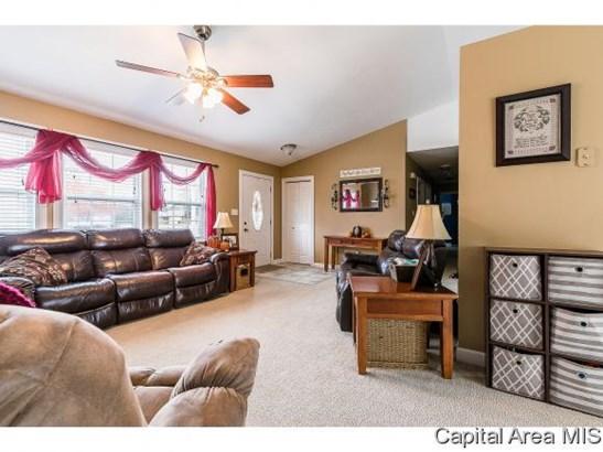 Ranch, Residential,Single Family Residence - Auburn, IL (photo 3)