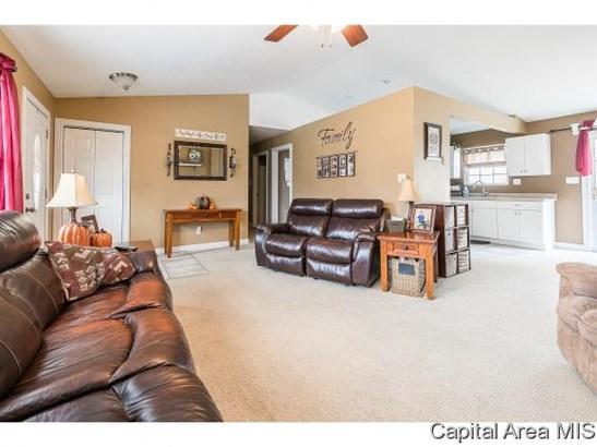 Ranch, Residential,Single Family Residence - Auburn, IL (photo 4)