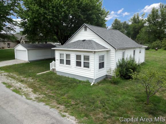 1 Story, Residential,Single Family Residence - Tovey, IL (photo 1)
