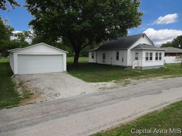 1 Story, Residential,Single Family Residence - Tovey, IL (photo 3)