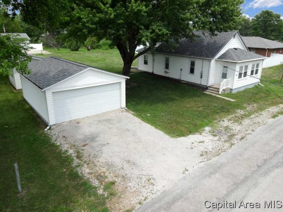 1 Story, Residential,Single Family Residence - Tovey, IL (photo 4)