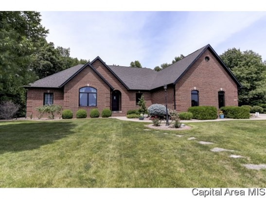 Ranch,1 Story, Residential,Single Family Residence - Rochester, IL (photo 1)