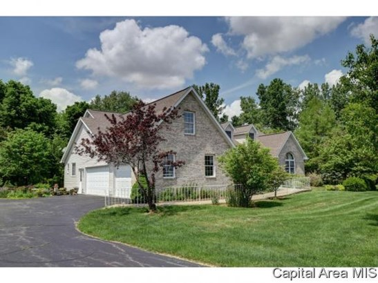 1 Story, Residential,Single Family Residence - Williamsville, IL (photo 2)