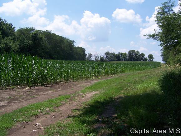 Crops - Loami, IL (photo 2)