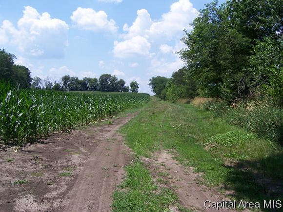 Crops - Loami, IL (photo 3)