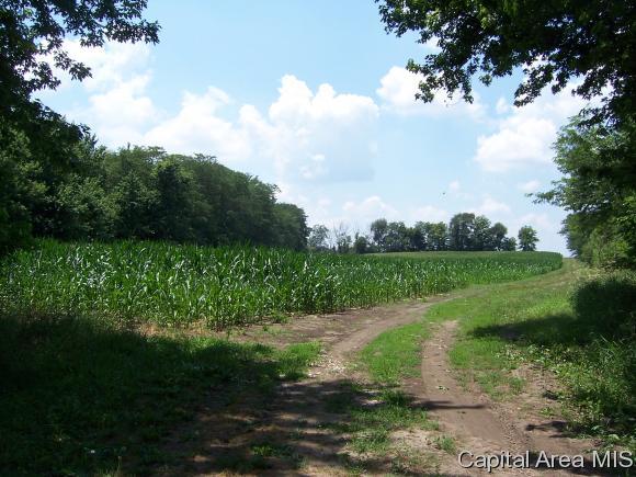 Crops - Loami, IL (photo 4)