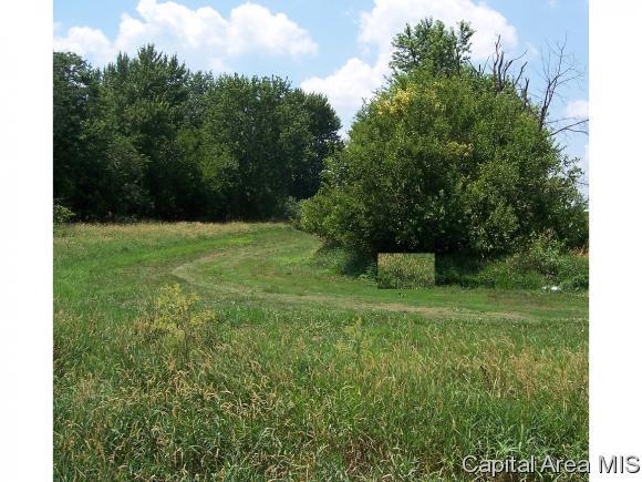 Crops - Loami, IL (photo 5)