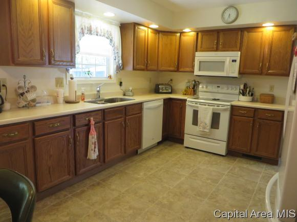 Ranch,1 Story, Residential,Single Family Residence - Farmersville, IL (photo 5)