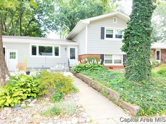 Tri-Level, Residential,Single Family Residence - Riverton, IL