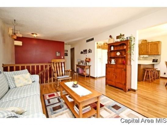 Bi-Level, Residential,Single Family Residence - Springfield, IL (photo 3)