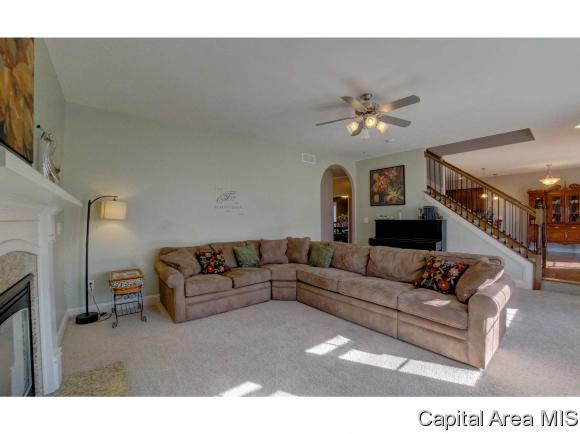 2 Story,Traditional, Residential,Single Family Residence - Chatham, IL (photo 3)