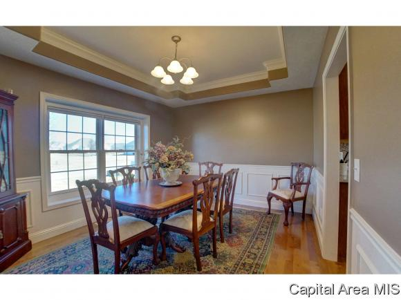 2 Story,Traditional, Residential,Single Family Residence - Chatham, IL (photo 5)