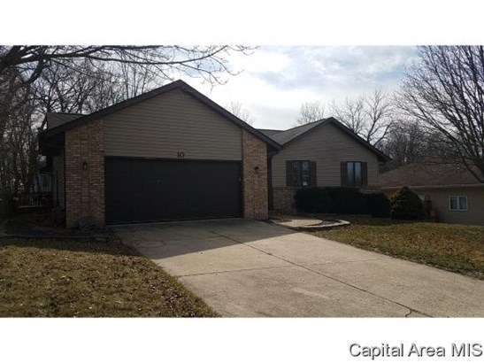 Ranch,1 Story, Residential,Single Family Residence - Williamsville, IL (photo 2)