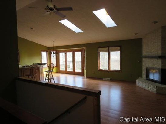 Ranch,1 Story, Residential,Single Family Residence - Williamsville, IL (photo 4)