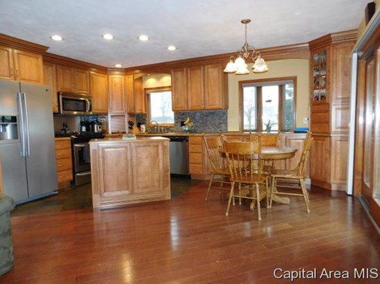 Ranch,1 Story, Residential,Single Family Residence - Springfield, IL (photo 4)