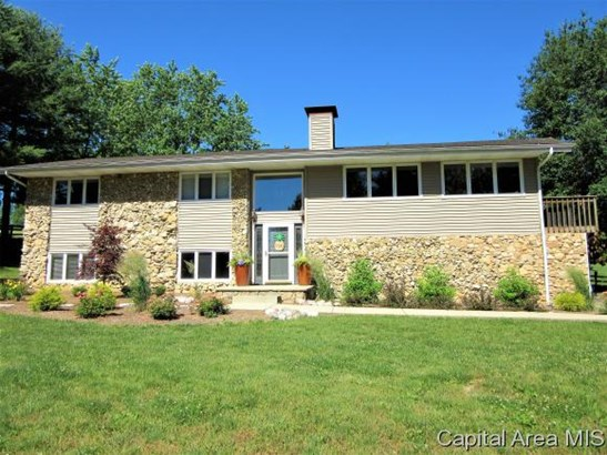 Residential,Single Family Residence, 2 Story,Bi-Level - Rochester, IL (photo 4)