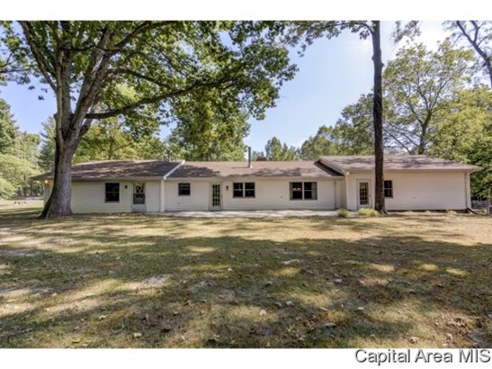 Ranch,1 Story, Residential,Single Family Residence - Petersburg, IL (photo 5)