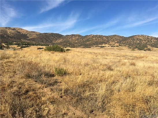 0 Vac/redrover Mine Rd/vic Eldre, Acton, CA - USA (photo 1)