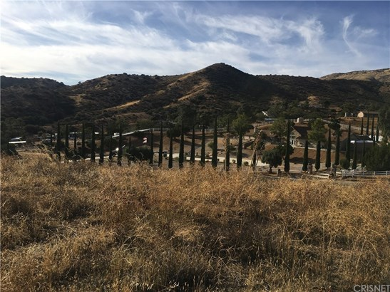 0 Vac/redrover Mine Rd/vic Eldre, Acton, CA - USA (photo 2)