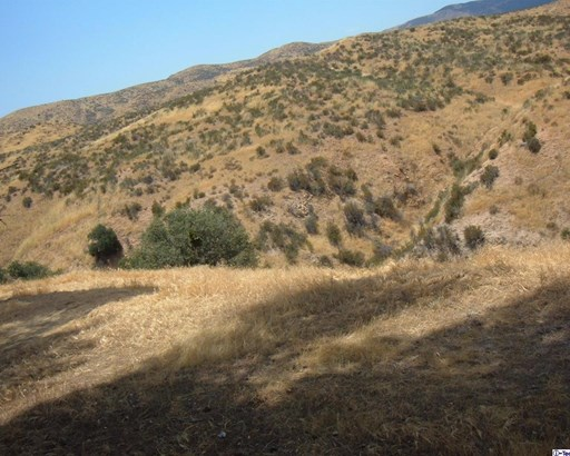 0 Ridge Avenue, Agua Dulce, CA - USA (photo 2)