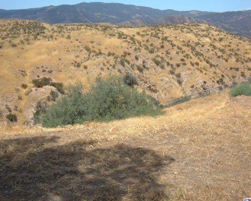 0 Ridge Avenue, Agua Dulce, CA - USA (photo 4)