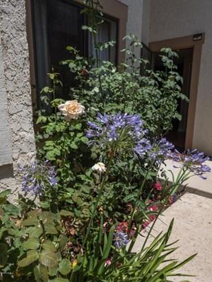 292 San Vincente Circle, Newbury Park, CA - USA (photo 4)